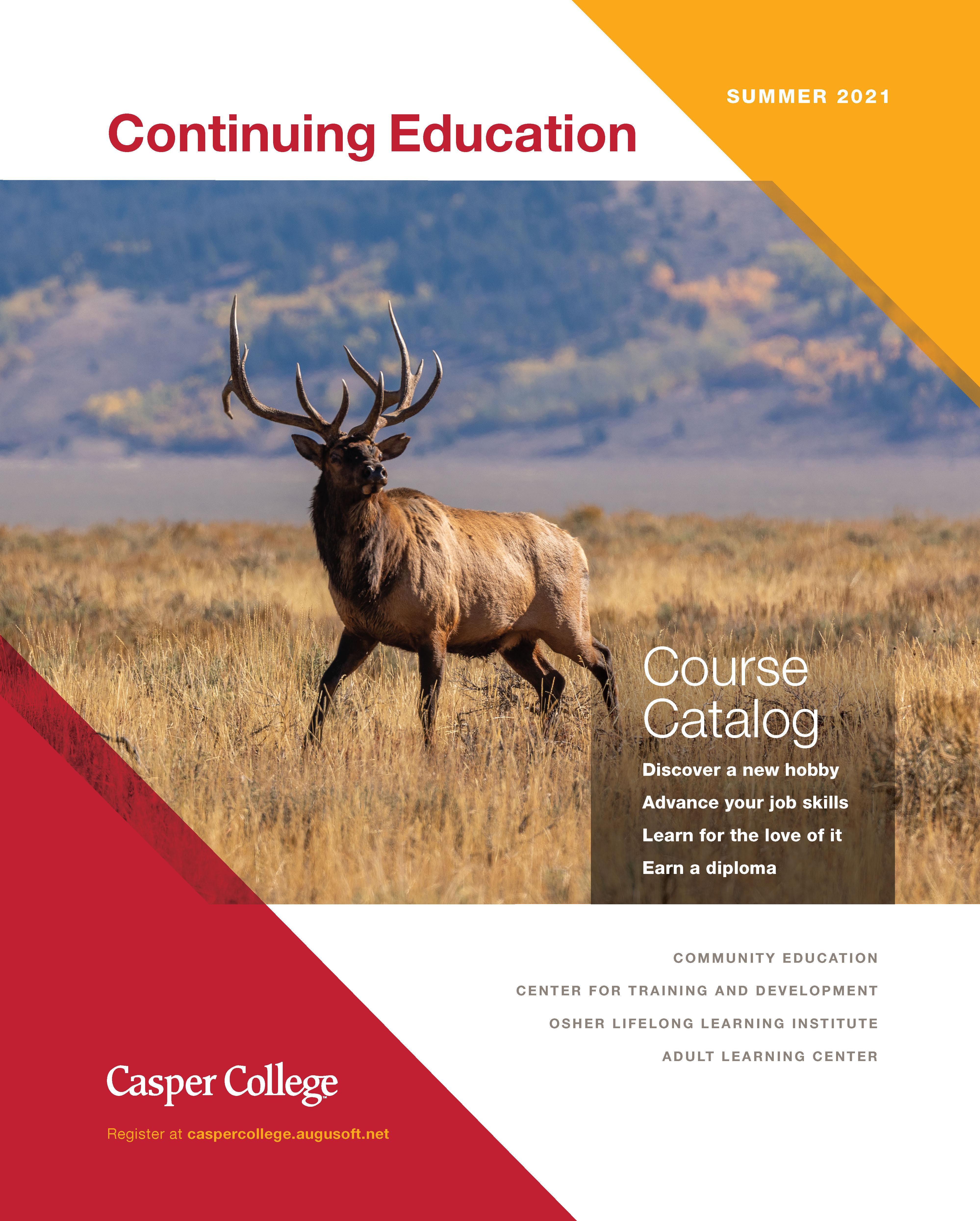 Summer 2021 catalog, Elk in field